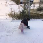 雪が降りましたね